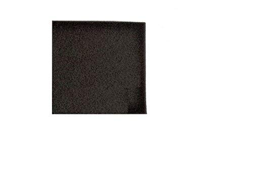 (Hoover UH20020 Nano Cyclonic Compact Upright Foam Filter # 562655001)