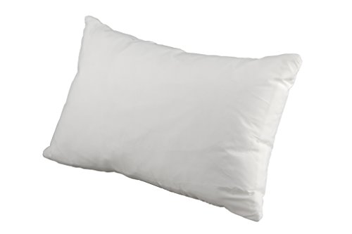 Premium White Goose Pillow Queen product image