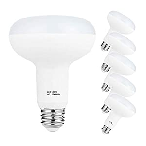 E26 Led Bulb, 12W BR30 Led Daylight White 5000K, 120V BR30 Bulb Non-Dimmable, 100W Equivalent Flood Light, Indoor Lighting, Led BR30 Pack of 6