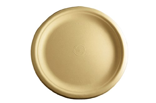 World Centric Wheat Straw/Bagasse Compostable 9-Inch Fiber Plate, 1000 ct by World Centric