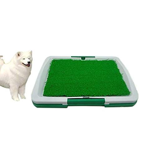 PeLoveT Alfombrilla de Inodoro para Mascotas, césped de Hierba – ABS de Tres Capas para