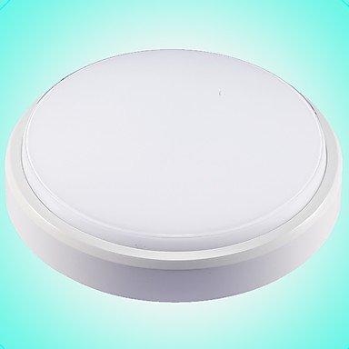 BAJIAN-LI Modern luxury Flush Mount, Modern/Contemporary Others Feature for LED Plastic Bathroom Study Room/Office Kids Room Outdoors Garage 220-240v by BAJIAN-LI