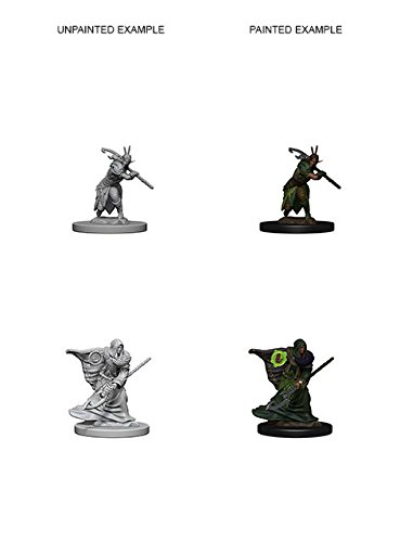 Nolzur's Marvelous Unpainted Minis: Elf Male Druid
