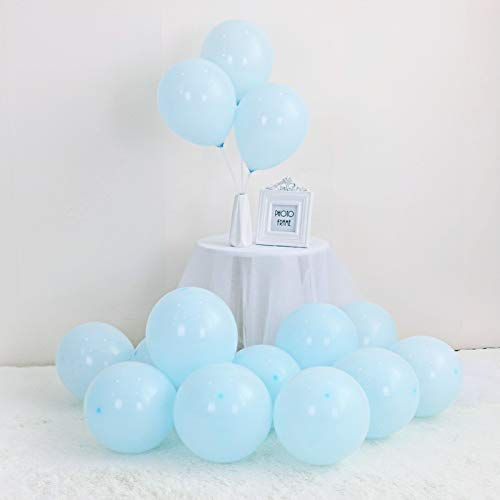 LOKMAN 100Pcs Macaron Blue Party Balloons for Wedding, Baby Shower, Girls Birthday Party Decoration. 10 Inch (Blue) -
