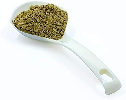 Best Botanicals Bladderwrack Herb Powder — Wildcrafted, High Iodine and Fucoidan — 16 oz