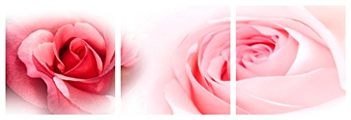 TANG DYNASTY(TM) 3 Panels Modern Giclee Artwork Canvas Prints Contemporary Abstract Pink Rose Pictures to Photo Paintings on Canvas Wall Art for Home Decorations Wall Decor,12x12inchx3pcs PP-865 ()