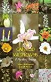 img - for Cape Cod Wildflowers: A Vanishing Heritage book / textbook / text book