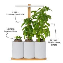 Huerto de cocina Lilo – blanco y bambú – listo para empujar ...
