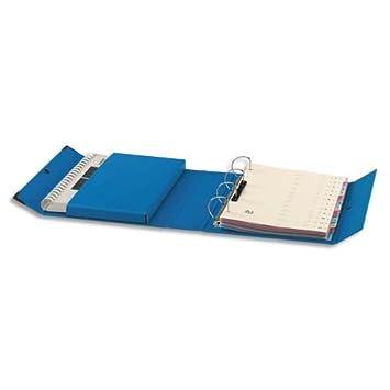 Arianex - Archivador (con 4 anillas en D, 8 cm), color azul: Amazon.es: Oficina y papelería