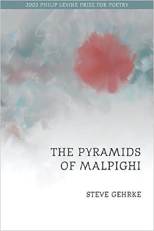 Book The Pyramids of Malpighi