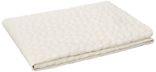 Dreamtex Home Organic Cotton Top Bed Bug Mattress Encasement, Twin