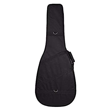 Kadence Acoustic Guitar Semi Hardcase Amazon In Electronics