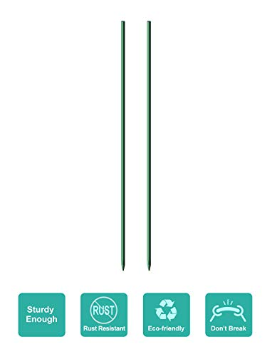 EcoStake Garden Stakes 8 ft Plant Stakes for Tomato Orchid Sunflower, Pack of 2 by EcoStake
