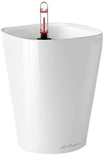 Lechuza 14900 Self-Watering Garden Planter, White High Gloss Review