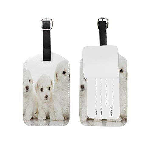 FunnyCustom Luggage Tags Bichon Frise Dogs Travel ID Identifier for People (Frise Tag Luggage Leather Bichon)