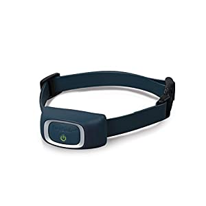 PetSafe Add-A-Dog Receiver Collar, Waterproof, Tone / Vibrations / 15 Levels of Static Stimulation for Dogs for 8 lb.