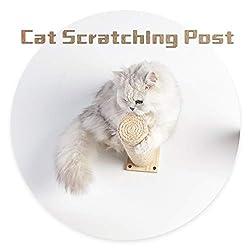 Scurrty Handcrafted Cat Wall Shelf Set Cat Hammock Cat Perch Wooden Scratching Post Step Modern Cat Wall Furniture