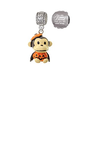 Resin Monkey in Pumpkin Costume Best Friend Charm Bead with You Are More Loved Bead (Set of 2)]()