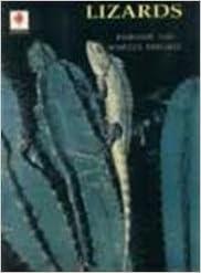Book Lizards