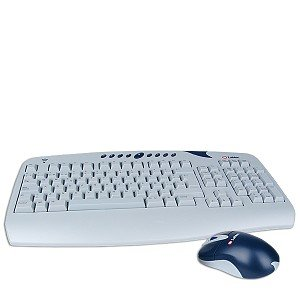 Labtec Cordless Desktop Spanish Keyboard & Mouse (Gray/Blue) - Labtec Desktop Mouse