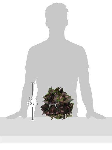 Flukers-Repta-Vines-Purple-Coleus-for-Reptiles-and-Amphibians