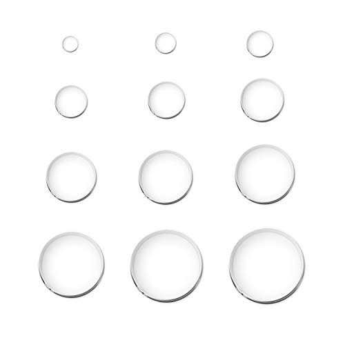 12 Pieces Round Biscuit Cookie Cutter Set - Stainless Steel Circle Donut Cutter Molds Assorted Size - Including One Tin Box for Storage