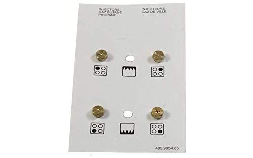Bolsita inyectores Gas butano referencia: 4431100102 para ...
