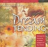img - for DreamTending book / textbook / text book