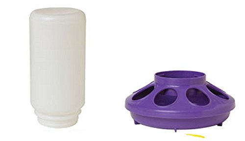 - Miller Little Giant Plastic Chicken Chick Feeder Jar and PURPLE Screw On Feeder Base 8 Openings Ribbed for Minimal Food Spillage