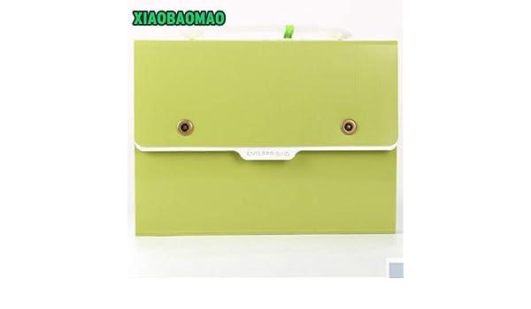 Amazon.com : File Folder | Thicker! Simple Metal Button 32.8 ...