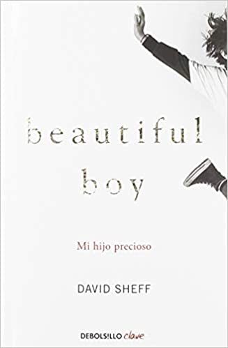 Mi Hijo Precioso (beautiful Boy) por David Sheff