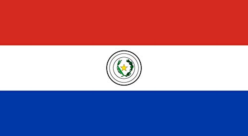DIPLOMAT-FLAGS magFlags Table-Flag/Desk-Flag: Paraguay 15x25cm