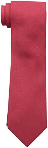 Van Heusen Men's Iridescent Solid Tie, Red, One Size ()