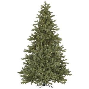 Vickerman Pre-Lit Frasier Fir Tree with 500 Warm White Italian LED Lights, 6.5-Feet, Green