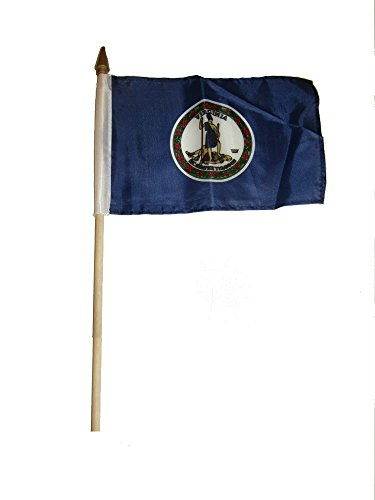 ALBATROS 6x9 6ftx9ft State of Virginia Stick Flag with Wood Staff for Home and Parades, Official Party, All Weather Indoors -