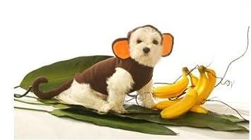 dog costume monkey pet halloween costume xlarge xl
