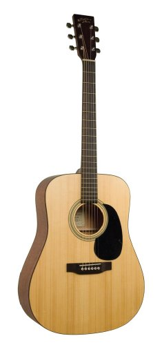 Recording King Classic Series (Recording King RD-06M Classic Series Dreadnought, Matte Finish)