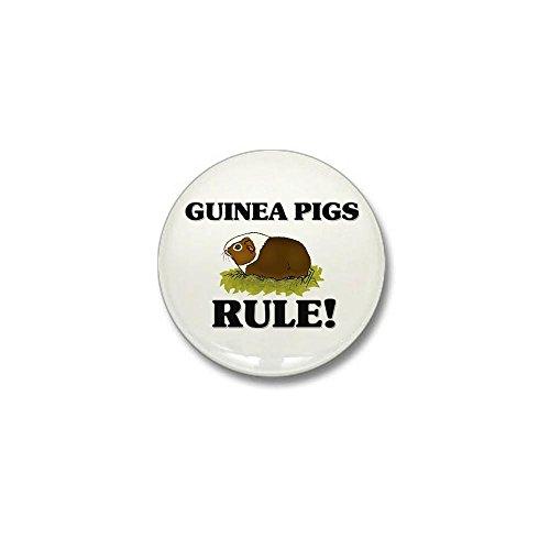 CafePress Guinea Pigs Rule! Mini Button 1
