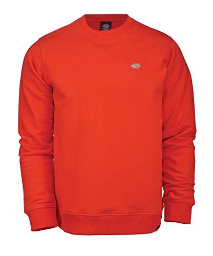 shirt Dickies Dickies Orange shirt Homme Orange SeabrookSweat SeabrookSweat Homme CQdhrsBtx