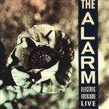 Alarm Sunglasses (Electric Folklore Live)