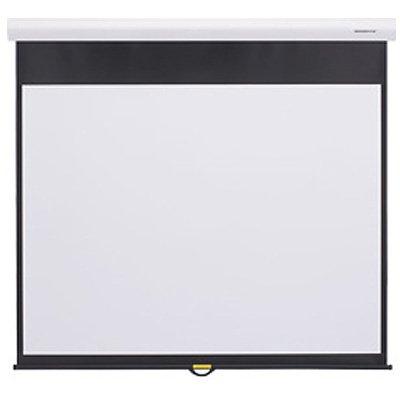 キクチ科学研究所 グランビュー手動スクリーン幕面ホワイトマット仕様80型ハイビジョンサイズ GSR-80HDW B000ZEVO60
