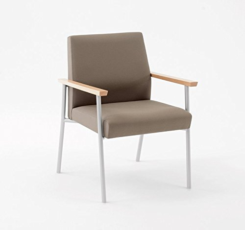 Lesro Mystic Guest Chair 400 lb. Capacity with Natural Wood Armrests, Silver Frame, Core Macro Fabric Mystic Guest Chair