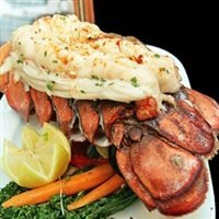 Today Gourmet - Lobster Tails (Maine) (14/16oz tails) 10lb case 9-11 tails