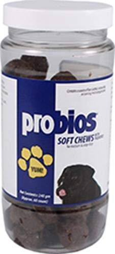 (Probios Soft Chews for Medium and Large Dogs, 240gm)