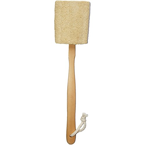 Mini Loofa (Natural Exfoliating Loofah luffa loofa Bath Brush On a Stick - With Long Wooden Handle Back Brush For Men & Women - Shower Sponge Body Back Scrubber Pack of 1)