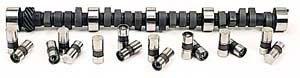 Small Block Chevy Camshaft Cam (Lunati 10120704LK Voodoo Camshaft Lifter Kit for Small Block Chevy)