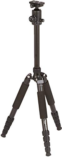 AmazonBasics 63-Inch Lightweight Aluminum Travel Tripod/Monopod with Bag