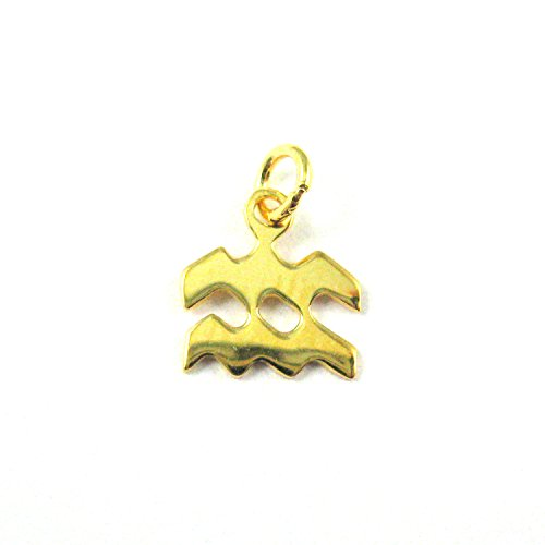 - 22K Gold plated Sterling Silver Horoscope Charms- Aquarius - Vermeil Zodiac Charms- Astrological Charm - Aquarius Zodiac Pendant-(2 pcs)