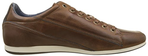 Redskins Wolki, Men's Low Brown (Marron+marine 7e)