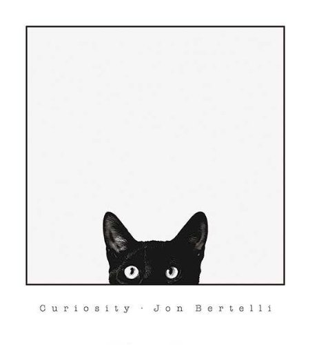 Curiosity Black Cat by Jon Bertelli 20x18 Art Print Poster Wall Decor Black and White Photograph of Kitty Kitten Feline (Black Cat Art)